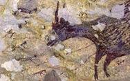 44 ngàn năm trước, con người đã biết lập biên bản đi săn?