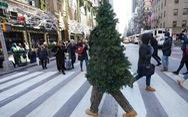 Giáng sinh không quà, không rác hay 'lễ mà, cứ vui đi'?