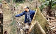 Để phá rừng tràn lan, hàng loạt cán bộ kiểm lâm Thanh Hóa bị kỷ luật
