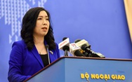 Việt Nam sẽ tham vấn các nước về vấn đề Mỹ - Iran tại Liên Hiệp Quốc