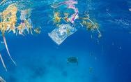 Du lịch biển Việt Nam quyết không còn rác thải nhựa