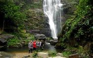 Vườn Quốc gia Pù Mát lần đầu thu phí tham quan
