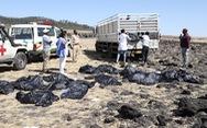 Chỗ máy bay Ethiopia rơi như bị bom cày, thi thể khắp nơi
