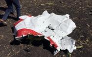 Trung Quốc, Indonesia yêu cầu ngưng khai thác máy bay Boeing Max 737