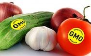 Nhật Bản cho phép bán thực phẩm biến đổi gene