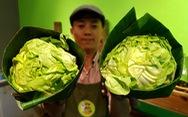 Tiệm nông sản ở Sài Gòn gói rau củ bằng lá chuối