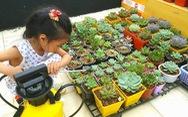 Hội mê trồng cây, họp chợ tặng nhau miễn phí