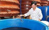Nước mắm công nghiệp - nước mắm truyền thống: Có phân biệt đối xử?