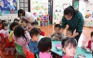 Truy nguồn thịt heo bẩn vào trường mầm non ở Bắc Ninh