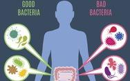 Vai trò của hệ vi sinh vật đường ruột với sức khỏe