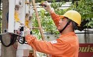 Khách hàng giám sát tiền điện trên website theo giá mới