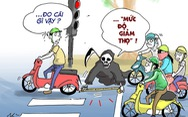 Văn hóa giao thông qua tranh biếm họa