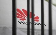 Doanh nghiệp công nghệ yêu cầu nhân viên dừng trao đổi thông tin với Huawei