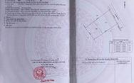 Công ty bất động sản Anh Luân: Chuyển nhượng đất vàng