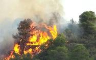 Kiểm lâm, công an, bộ đội, dân quân tự vệ cùng chống cháy rừng ở Hà Tĩnh