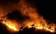 Rừng thông cháy đỏ trời, hai tỉnh cùng dập lửa di tản dân trong đêm