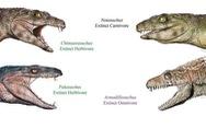 Cá sấu cổ đại vốn nằm nhấm nháp hoa quả?