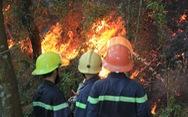 Rừng thông lại chìm trong lửa, Hà Tĩnh cấp tập di dời dân, bảo vệ trạm xăng