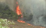 Đến lượt rừng thông ở Quảng Bình bốc cháy trong nắng nóng
