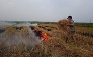 Ô nhiễm bụi mịn tăng cao ở Hà Nội do nhiều nơi đốt rơm rạ