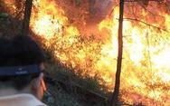 Miền Trung có mưa, nguy cơ cháy rừng vẫn rất cao