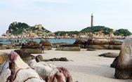 Lội biển qua đảo Kê Gà ở Hàm Thuận Nam