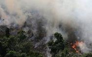 9.500 vụ cháy 1 tuần, rừng Amazon 'lá phổi Trái đất' biến dạng khủng khiếp