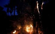 Tổng thống Brazil chỉ trích quốc tế xen vào việc nội bộ trong vụ cháy rừng Amazon