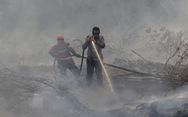 Cháy rừng: Indonesia mất bò 2 lần mới lo làm chuồng?