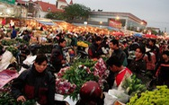 Một vòng chợ hoa tết Quảng Bá