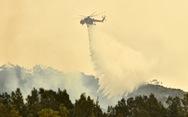 Úc đón 'mưa vàng', cháy rừng thuyên giảm