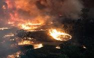 Nhiệt độ lên 40 độ C, Úc hồi hộp chờ mưa ngăn cháy rừng