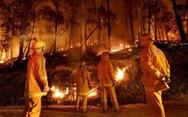 Cháy rừng ở Úc thải 370 triệu tấn khí carbon, ngang cháy rừng Amazon