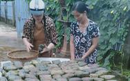 Hội phụ nữ trắng đêm nấu bánh chưng gửi đồng bào miền Trung