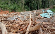 Vụ lở núi ở Phước Sơn: Đã tìm thấy 5 thi thể, bộ đội tạm dừng đến hiện trường