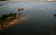 Quảng Ngãi không chỉ có đảo Lý Sơn hay núi Ấn, sông Trà