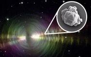 Nhìn lại 2020: 10 khám phá khoa học tuyệt vời bị COVID che mờ