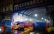 Thời Báo Hoàn Cầu: 'COVID-19 xâm nhập Trung Quốc qua đồ đông lạnh từ nước ngoài'
