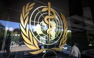 Đài Loan dự họp WHO về Covid-19 mà 'không cần Bắc Kinh phê chuẩn'
