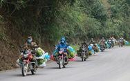 Dân làng gom 22 tấn chuối gửi đến tâm dịch Vũ Hán