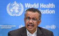 WHO bị nghi 'lạc quan tếu' trong dịch virus corona