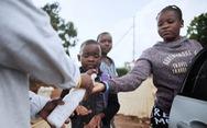 Nam Phi thành tâm dịch châu Phi, tuyên bố tình trạng thảm họa quốc gia