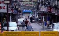 Bloomberg: 'Tình báo Mỹ kết luận Trung Quốc giấu dịch COVID-19 ở Vũ Hán'