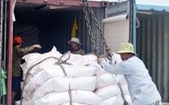 Gạo sẽ thôi nằm tại cảng...