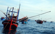 Mỹ 'cực kỳ quan ngại' việc Trung Quốc đâm chìm tàu Việt Nam ở Biển Đông