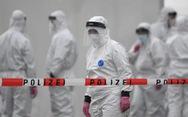 Đức: Số ca nhiễm tăng trở lại sau khi nới lỏng biện pháp phong tỏa
