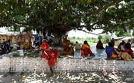 Ấn Độ như 'thiêu đốt' trong nắng nóng 50 độ C