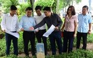 TP.HCM: bàn giao mặt bằng để triển khai tuyến metro số 2