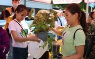 Tay xách nách mang cây về nhà từ chợ xanh 0 đồng