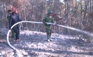 Hơn 300 người mới dập được đám cháy rừng nghi do đốt rác gây nên
